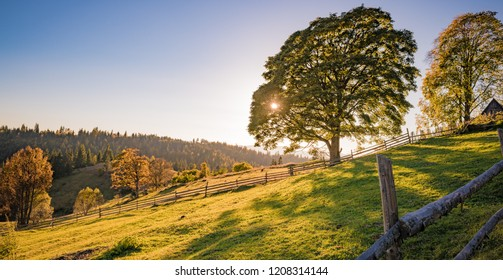 idyllic view of the Carpathian mountains in fall with beautiful autumn colors and snow tipped peaks
