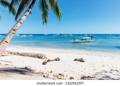An idyllic view of the popular white sand Alona Beach located on Panglao Island, Bohol, Philippines