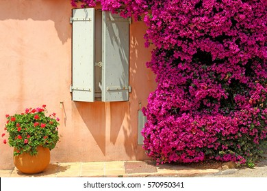 Idyllic view of South houses / Hot and sunny summer day in Porquerolles (French Riviera) - bright Bougainvillea bush around the window with blue shutters with heart-shaped cuts on it.
