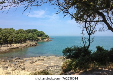 Idyllic view of the sunlit beach at the isle of Aix, France