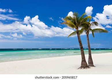 Idyllic white sand tropical beach with palm trees on exotic island in Philippines