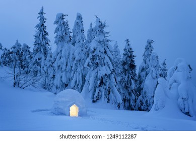Igloo snow in a mountain forest. Night view with snowy fir trees. Dreamy winter scene