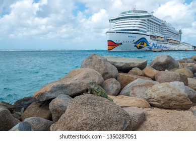 Iguana on some stones sunbathing and in the background the Aida Pearl cruiser anchored in the port of Oranjestad, is one of the most modern type of boat. Oranjestad. Aruba January 23, 2019