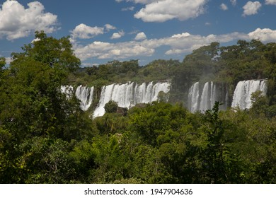 The Iguazu falls in the jungle. View of the white falling water flowing across the tropical rainforest in Iguazu national Park, Misiones, Argentina. The waterfalls and lush vegetation.