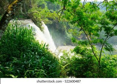 iguazu waterfalls in argentina.