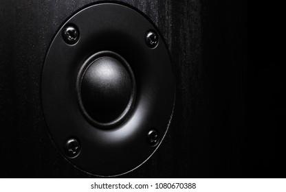 Iimage of high frequency audio speaker in wooden case.