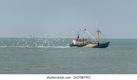IJmuiden, Noord-Holland/Netherlands -Jan 20-01-2020- Fishing vessel is fishing in the North Sea at the coast of IJmuiden. The fishing boat is being followed by seagulls.