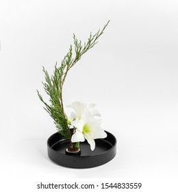 Ikebana in the style of Moribana in a black vase on a white background