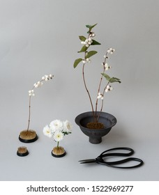 ikebana of white flowers on a gray background