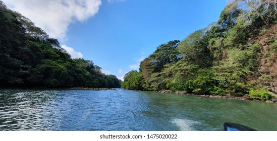 ILE AUX CERF, MAURITIUS 18,2019. Scenery along the banks of the mangroves in Mauritius.