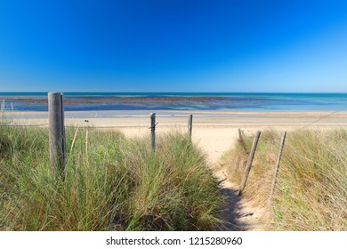 Ile de Rée- Beach exit with grass sand and sea at the horizon