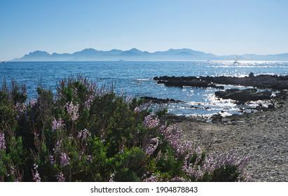Ile de Sainte Marguerite, off Cannes, French Riviera, France