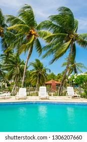 Ilha de Itamaraca, Brazil - Circa January 2019: Beautiful garden with a swimming pool at a house by the sea