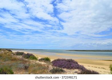Ilha deserta, near Faro, Portugal