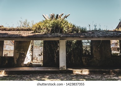 "ILHA GRANDE, ANGRA DOS REIS/RIO DE JANEIRO/BRASIL - APRIL 18, 2019: View of ruins of the prison ""Instituto Penal Candido Mendes"" demolished in 1994 in Vila Dois Rios."
