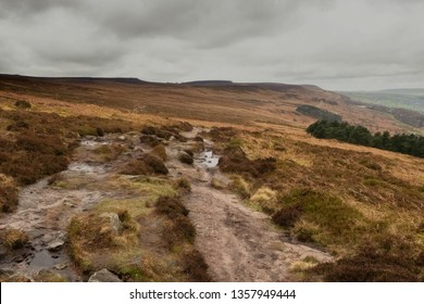 """Ilkley Moor is part of Rombalds Moor, the moorland between Ilkley and Keighley in West Yorkshire the moor is well known as the inspiration for the Yorkshire """"county anthem"""" On Ilkla Moor """""""