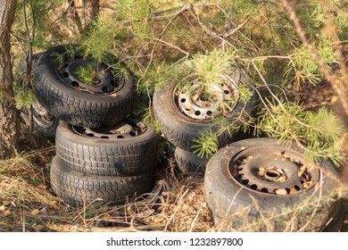 Illegal garbage disposal, old car tires in the forest