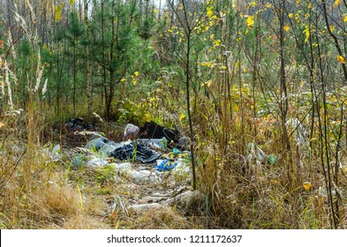 Illegal garbage dump in the forest