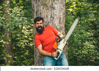 Illegal logging continues today. Lumberjack in the woods with chainsaw axe. Lumberjack on serious face carries chainsaw. Woodcutter with chainsaw on sawmill