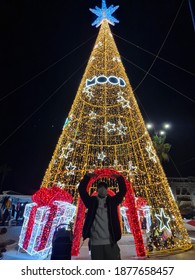 Illuminate tree chrismas on viareggio