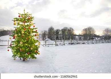 Illuminated Christmas Tree in a snowy landscape