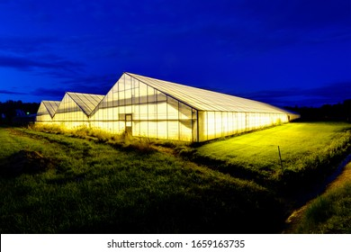 Illuminated green house at night, Sweden, Europe