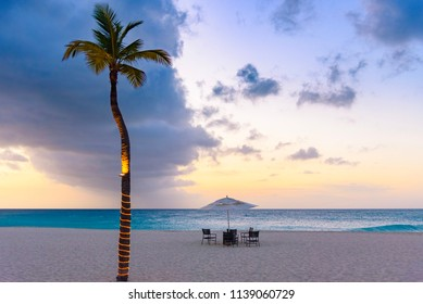 Illuminated palm tree with a table ready for dinner at sunset in the Eagle Beach, Aruba.