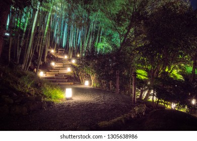 An illuminated path at the bamboo forest in the tranquil gardens of Kodaiji Buddhist Temple in Gion District, Kyoto, Japan.