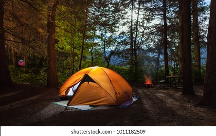 Illuminated tent on a camp site in the forrest at night