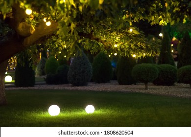 illumination backyard light garden with electric ground lantern with round diffuser lamp with garland of light bulbs on tree branches, dark landscaping park with illuminate night scene, nobody.