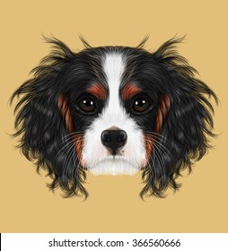 Illustrated portrait of Dog. Cavalier King Charles Spaniel on beige background.