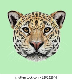 Illustrated portrait of Jaguar. Cute fluffy face of Big cat with yellow eyes on green background.