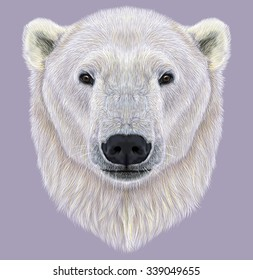 Illustrated Portrait of Polar Bear on violet background. The largest and most northern bear.