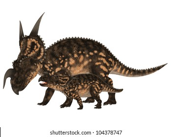 Illustration of an adult and a young Einiosaurus (dinosaur species) isolated on a white background