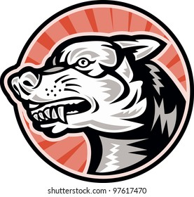 Illustration of an angry mongrel dog baring fangs set inside circle done in retro woodcut style.