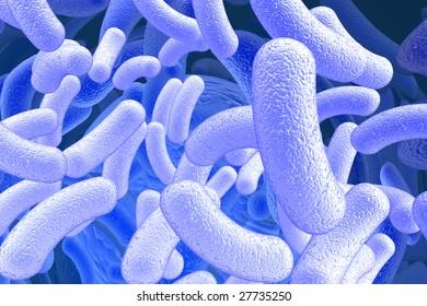 illustration of the bacillus microorganisms