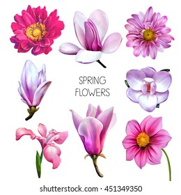 Illustration of Beautiful red, pink flowers, set of spring flowers: iris blossoms, bell flower, dahlia, daisy and magnolia flowers in different veiws isolated on white background