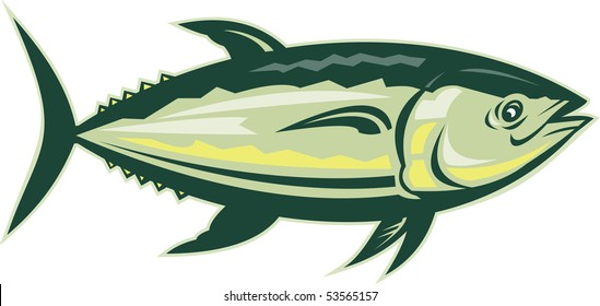 illustration of a Bluefin tuna viewed from side isolated on white
