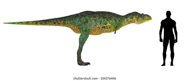 Illustration of a comparison of the size of an adult Aucasaurus with an average adult male human (1.8 meters)