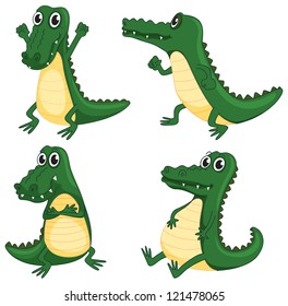 illustration of crocodiles on a white background