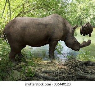 An illustration depicting Brontotherium getting a drink in forest river. Brontotherium is an extinct group of large herbivore browsers. It was endemic to North America during the Late Eocene epoch.