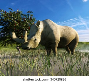 An illustration depicting Brontotherium in a misty grassland. Brontotherium an extinct group of rhinoceros-like browsers related to horses. It was endemic to North America during the Late Eocene epoch