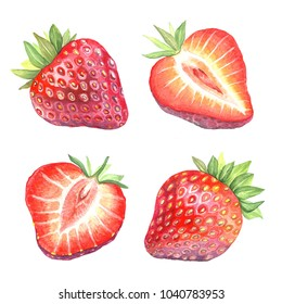 Illustration of a dessert berry. Watercolor strawberry in a cut. Isolated picture of fruits on white background. Vegetarian food.