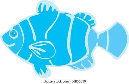 illustration of fish on white