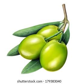 Illustration of fresh jujube isolated on white