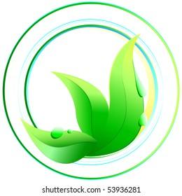 illustration: green leaf in circles