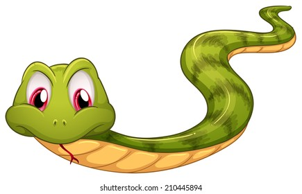 Illustration of a green snake on a white background