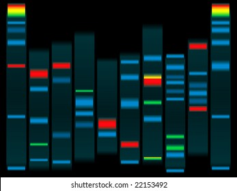 Illustration of a human dna in black with highlighted dna strands ideal for schools info