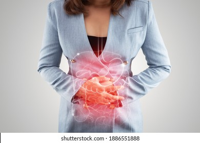 Illustration of internal organs is on the woman's body against the gray background. Business Woman touching stomach painful suffering from enteritis. internal organs of the human body. IBS - Shutterstock ID 1886551888