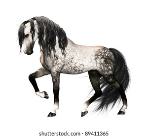Illustration of an isolated horse